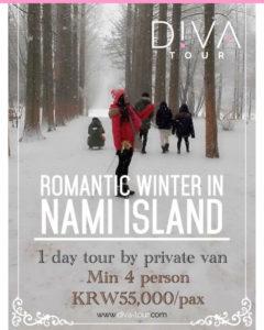 Romantic Winter in Nami Island